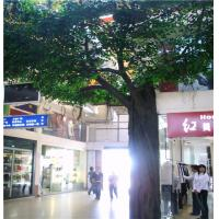 Wholesale hx fake  banyan tree, artificial ficus tree from china suppliers