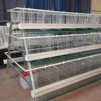 Wholesale 3 Tiers 120Birds A Type Chicken Cage Layer Cage Hen Poultry Cage from china suppliers