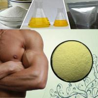 Wholesale Post Cycle Therapy Steroids Chlormadinone Acetate 99% 302-22-7 Estrogen Steroids Powder from china suppliers