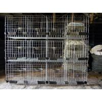 Buy cheap H Type Pigeon Cage Hot Sale in Saudi Arabia Market from wholesalers