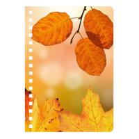 Wholesale 3D Lenticular Plastic Hard Cover Spiral Notebook For Office & School / Stationery Supplies from china suppliers