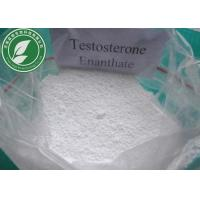 Wholesale Raw Steroid Powder Pharmaceutical Grade Testosterone Enanthate CAS 315-37-7 from china suppliers