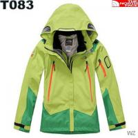 Wholesale TNF Women's Skiwear,Women's Down Coat, Down Jacket,Winter Jacket from china suppliers