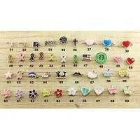 Fashion Stainless Steel Glass Floating Lockets Pendant charms for sale