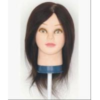 China Training head, Mannequin head,Model head on sale