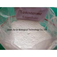 Wholesale CAS 315-37-7 Testosterone Enanthate Injectable Steroids , Test Enan Androtardyl Testosterone Injections Steroids from china suppliers