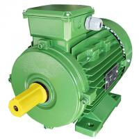 Squirrel Cage 3 Phase 4 Pole Induction Ac Motor 0.75kw For Woodworking Machinery for sale