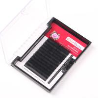 Wholesale Individual 3D Eyelash Extensions Camellia Eyelash Extension Multi Lengths In One Row from china suppliers