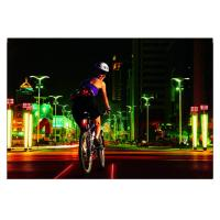 Wholesale 8LEDs Rechargeable Bicycle Safety Rear Laser Lights from china suppliers