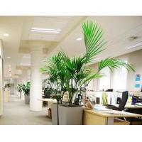 Wholesale Office Space To Rent London Worldwide Basic Business Needs Cubicle Style from china suppliers
