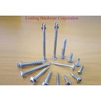 China Self Drilling Screw - Stainless Steel on sale