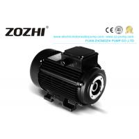 China HS 112M3-4 6.2KW 8.5hp Hollow Shaft Motor Direct Pump Mounting For Industrial Cleaning for sale