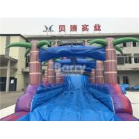 Quality Purple Adult Kids Inflatable Water Slides With Pool , Slip n Slide for sale