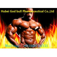 Buy cheap Boldenone 17-Acetate powder 2363-59-9 fitness muscle growth from wholesalers