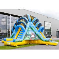 Wholesale Double Lane Valcano Jungle Large Inflatable Slides With Climb from china suppliers