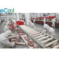 Constant Keeping Multipurpose Cold Storage For Meat / Fish / Chicken / Beef for sale