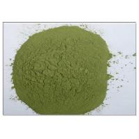 Wholesale Bayberry Bark Extract Natural Anti Inflammatory Supplements Green Powder CAS 529 44 2  from china suppliers