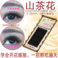 Wholesale 3 Mix Length In One Row 3D Eyelash Extensions B Curl Lash Extensions 0.05mm from china suppliers