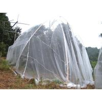 Wholesale Fruit Tree Net from china suppliers