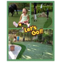 diy backyard putting green. Do it yourself..!! of item ...