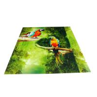 Wholesale Parrot Pattern Green Plastic Commercial Ceiling Panels No Cracking from china suppliers