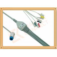 Wholesale Mindray PM5000 Patient 5 Lead Ecg Cable 12 Pin Ecg Lead Wires from china suppliers