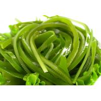 Wholesale weight loss fucoxanthin aminaria japonica extract/seaweed extract from china suppliers