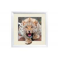Quality 5D House decorative Picture 3D Lenticular Printing Service CMYK Offset Printing for sale