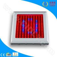 Wholesale LED Hydroponics Grow Lights (CDL-G150W) from china suppliers