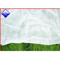 Wholesale Spunbond Non Woven Polypropylene Landscape Fabric For Ground Cover ECO Friendly from china suppliers