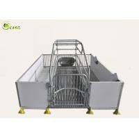 Wholesale Good Warming PVC Board Hog Farrowing Cage Automatic Piglet Nursery Stall Pen from china suppliers