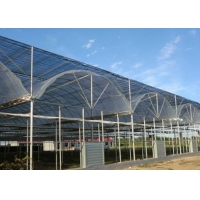Wholesale Thermal Insulation Single Span Tunnel Plastic Film Greenhouse from china suppliers