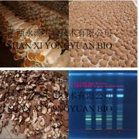 reishi mushroom series:  extract,  Shell-broken Reishi Spore powder, Reishi slices, bonsai