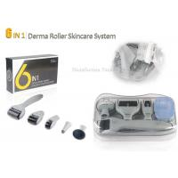 Wholesale Grey Stainless Steel Needle Microneedle Skin Dermal Roller System 6 in 1 Roller from china suppliers