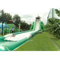 Wholesale Hippo Giant Water Slide For Adult , Comercial Slide Water Slip And Slide With Pool from china suppliers