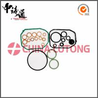 Wholesale 5.9 cummins diesel rebuild kit 800636 for SEAT/VW high quality diesel rebuild kit for sale from china suppliers