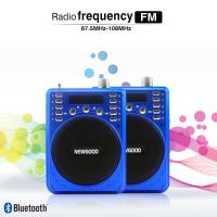 Quality 2018 new fashionable Portable Bluetooth Recorder Speaker with FM radio blue for sale