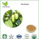 Wholesale Noni Extract,noni powder,noni fruit extract,noni p.e,noni fruit powder from china suppliers