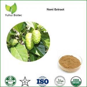 Noni Extract,noni powder,noni fruit extract,noni p.e,noni fruit powder