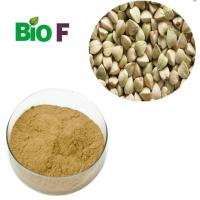 China Natural Energy Supplements Buckwheat Powder With Flavon Solvent Extraction on sale