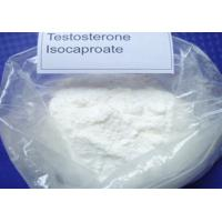 Wholesale Raw White Powder Testosterone Isocaproate Muscle Building Steroids CAS 15262-86-9 For Muscle Mass from china suppliers