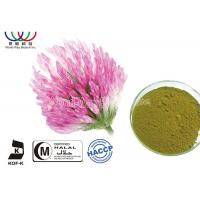 Wholesale Organic Red Clover Flower Extract , Natural Phytoestrogens Red Clover Isoflavones Extract from china suppliers