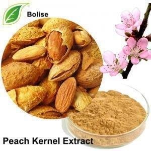 Wholesale Peach Kernel Smoothes Wrinkles Prunus Persica Pure Grapeseed Extract from china suppliers