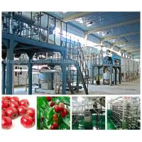 Automatic Beverage Processing Plant Machinery / Dates And Jujube Processing Line for sale