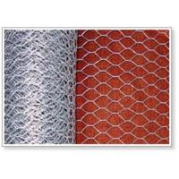 China Hexagonal wire netting (factory & exporter) on sale