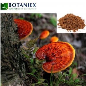 China Reishi Mushroom Extract Powder Ganoderma Lucidum Polysaccharides Powder Ganoderma Lucidum on sale