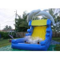 Wholesale Dolphin Inflatable Water Slide For Kids And Adults , Giant Inflatable Water Slide With Pool from china suppliers