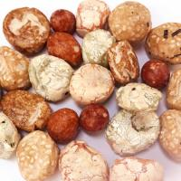 Wholesale Coconut Flavor Handpicked King Cracker Coated Peanut Snack No Pigment from china suppliers