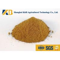 Wholesale Promote Animal Growth Poultry Feed Products With Fresh Fish Raw Material from china suppliers