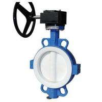 Wholesale Full PTFE Lined Butterfly Valve Seat For Wafer / Lug / Flanged Valve 2 '' - 24 '' Size from china suppliers